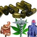 Cibdoca CBD olej v kapslích 30 ks - 300mg CBD (98% cannabidiol)